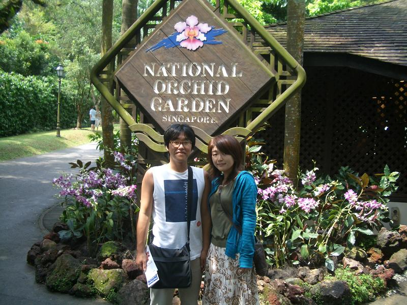 シンガポール植物園の画像 p1_37